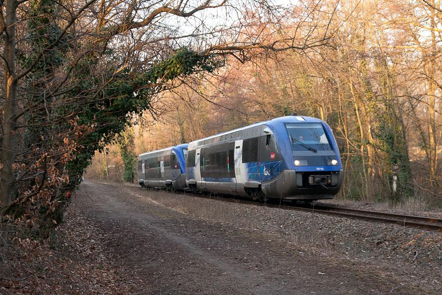 Trafic TER encore perturbé entre Tassin et Lozanne